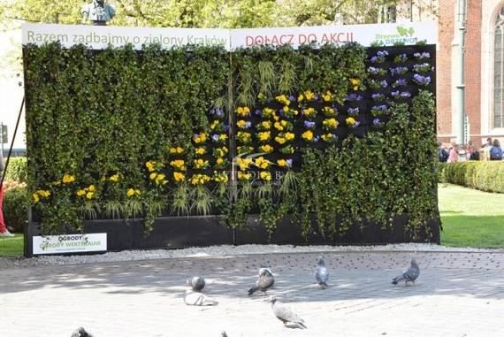 zielona ściana kraków