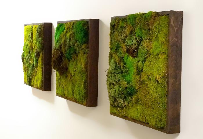 Zielone ściany kraków